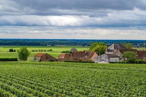 Région viticole de Bourgogne