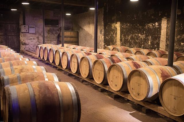 Beaujolais : les cépages, appellations et caractéristiques des vins de la région