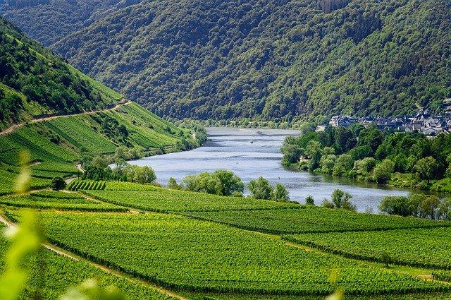 Lorraine : les cépages, appellations et caractéristiques des vins de la région
