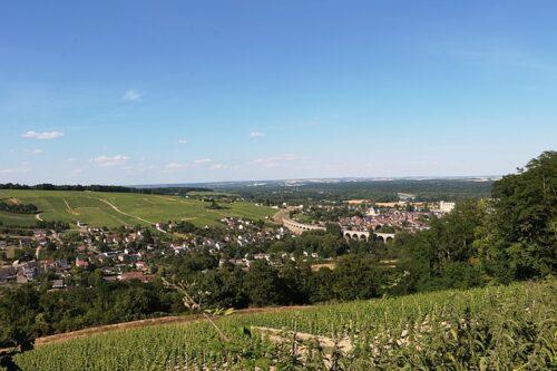Vallée de la Loire : les cépages, appellations et caractéristiques des vins de la région