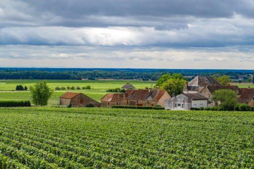 Oenotourisme en  Bourgogne : la route des vins bourguignons