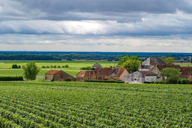 bourgogne-route-crus