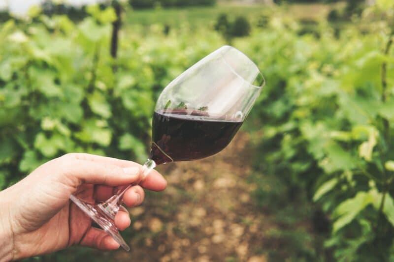 comment choisir un bon vin rouge