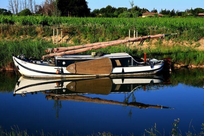 Oenotourisme en Languedoc : une route des vins à découvrir